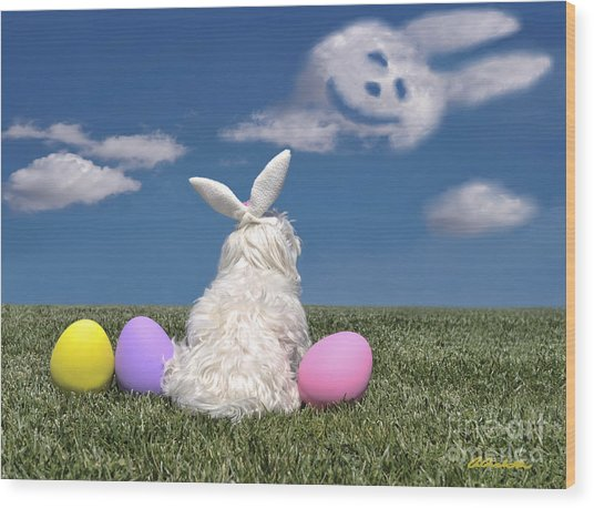 Maltese Easter Bunny Wood Print