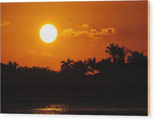 Marco Island Sunset Wood Print