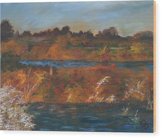 Mendota Slough Wood Print