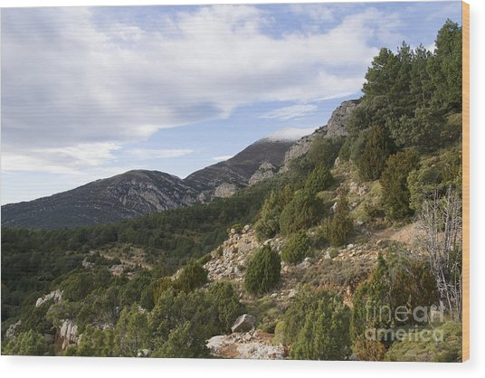 Mountain Landscape In Huesca Wood Print