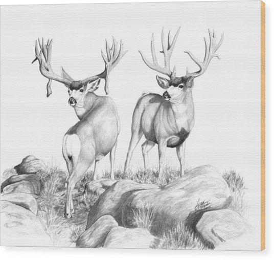 2 Muley Bucks Wood Print