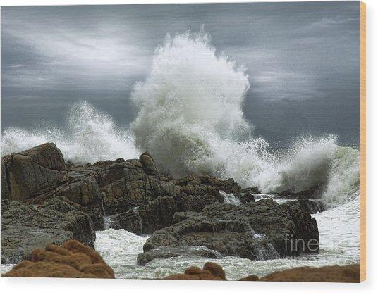 Tidal Leap Wood Print