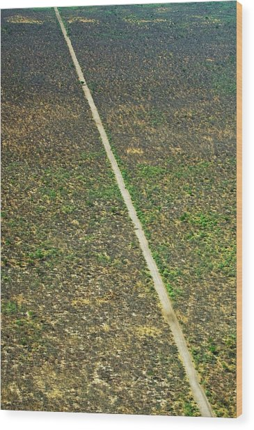 Okavango Delta Wood Print by Louise Murray/science Photo Library