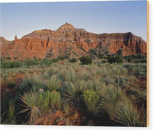 Palo Duro Canyon Wood Print