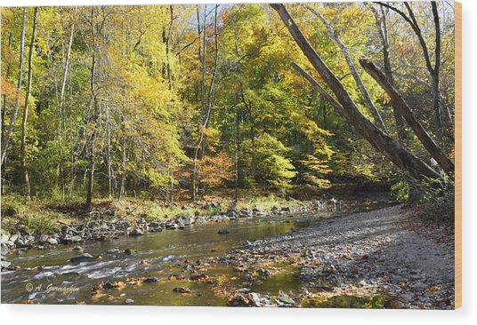 Philadelphia Landmark Pennypack Creek In Autumn Wood Print