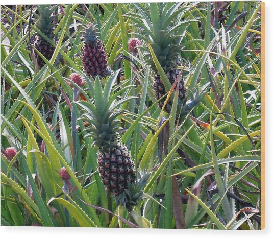 Pineapple Dance Wood Print