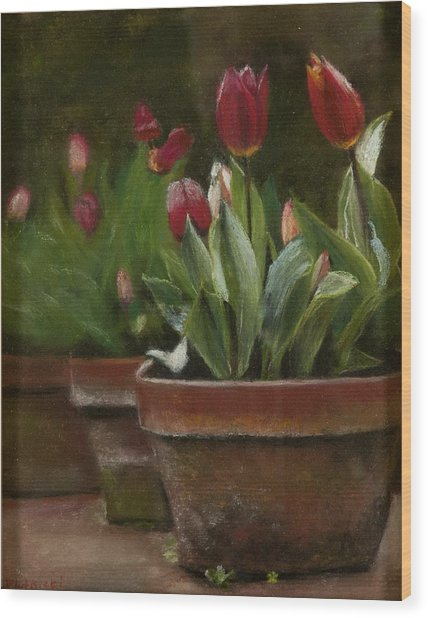 Potted Tulips Wood Print