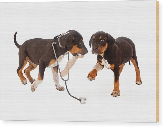 Puppy Veterinarian And Patient Wood Print