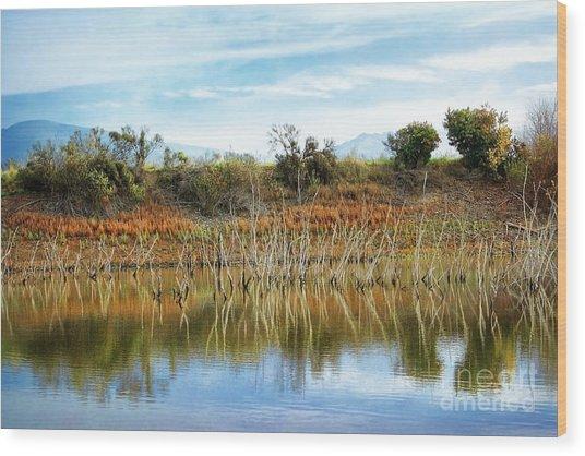 Quarry Lakes Wood Print by Ellen Cotton