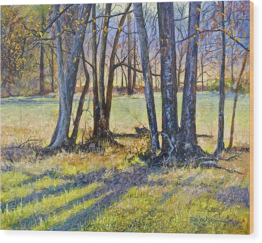 Quiet Afternoon Sunset Wood Print