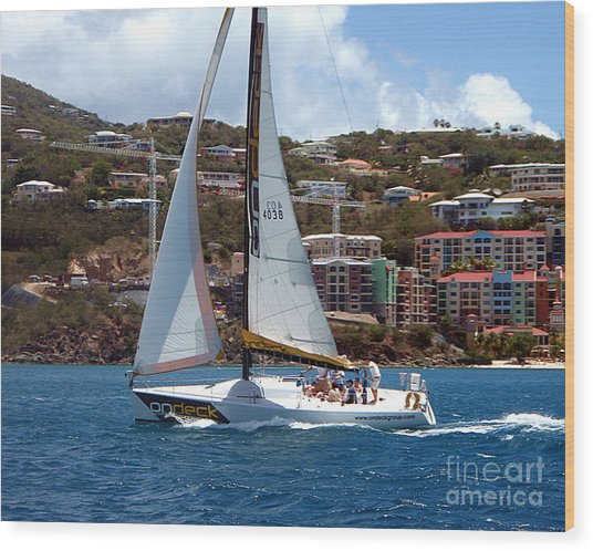 Racing At St. Thomas 1 Wood Print