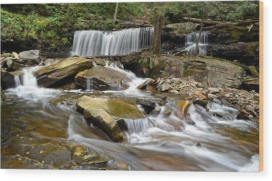Ricketts Glen Delaware Falls Wood Print
