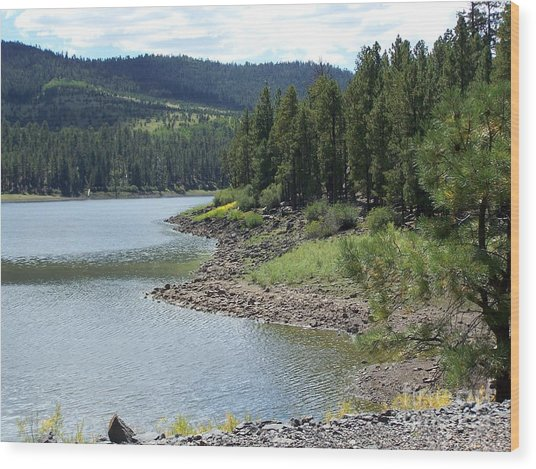 River Reservoir Wood Print