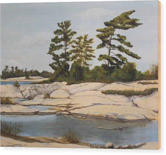 Rock Ponds. Lost Bay. Beausoleil Wood Print by Humphrey Carter