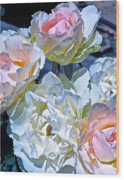 Rose 59 Wood Print