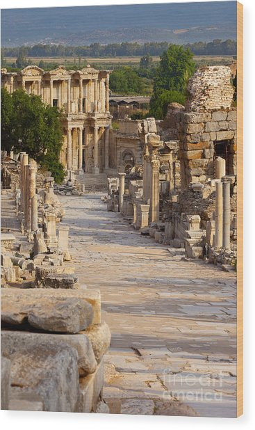 Wood Print featuring the photograph Ruins Of Ephesus by Brian Jannsen