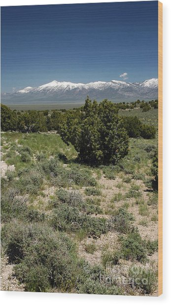 614p Schell Creek Range Nv Wood Print