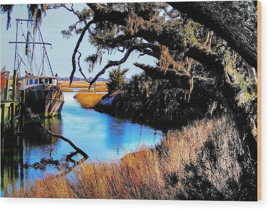 Sleeping Shrimper Wood Print