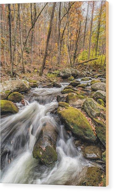 Smoky Mountain Stream 2 Wood Print