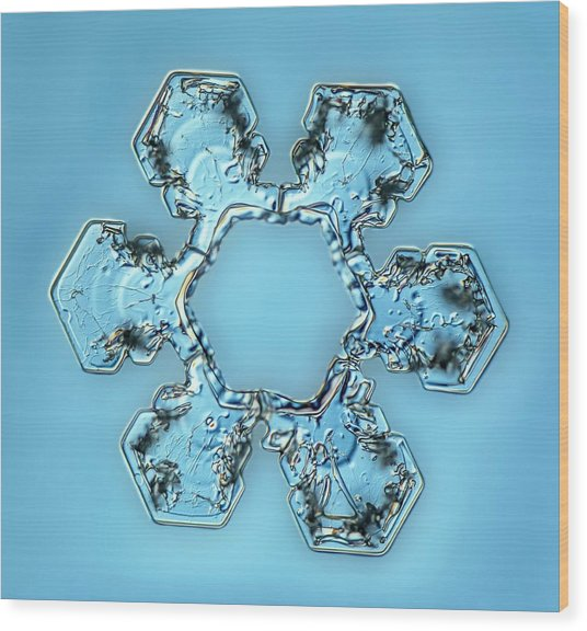 Snowflake Crystal Wood Print by Gerd Guenther