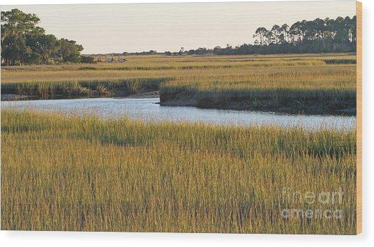 South Carolina Salt Marsh Wood Print