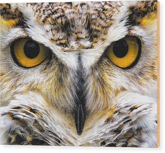Staredown Wood Print