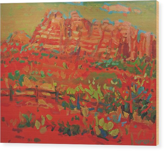 Sw Landscape Wood Print by Brian Simons