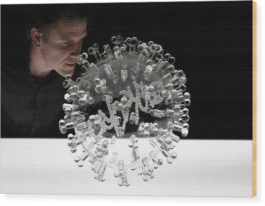 Swine Flu Virus Wood Print by Luke Jerram/science Photo Library