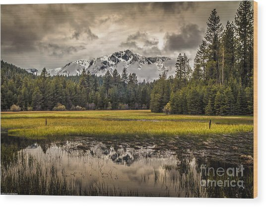 Tahoe Spring Wood Print