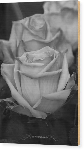 Tea Roses In Black And White Wood Print