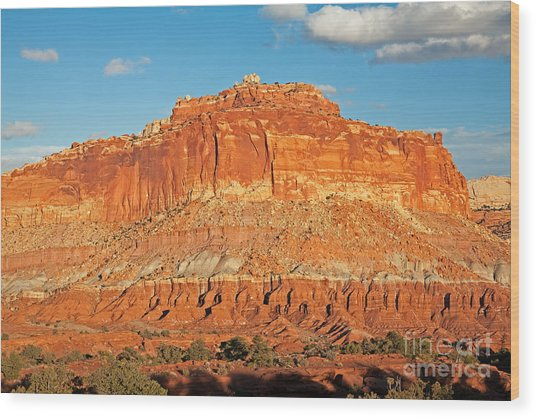 The Goosenecks Capitol Reef National Park Wood Print