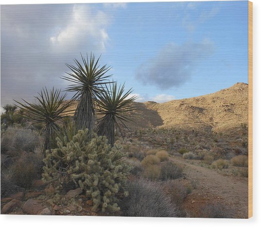 The Living Desert Wood Print