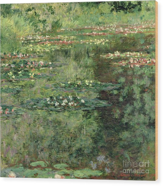 The Waterlily Pond Wood Print
