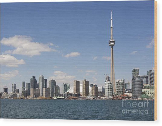 Toronto City Skyline Wood Print