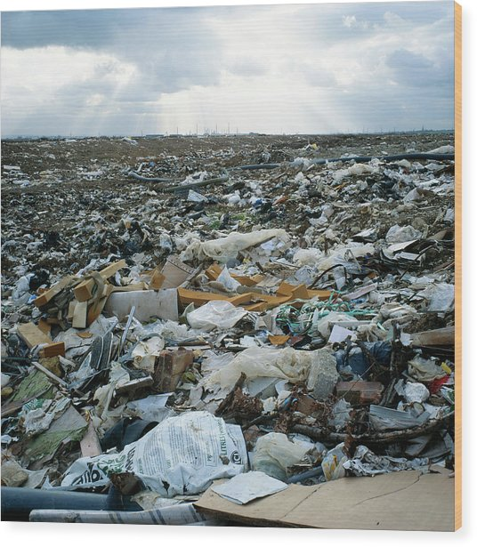 Toxic Waste Dump Wood Print by Robert Brook/science Photo Library