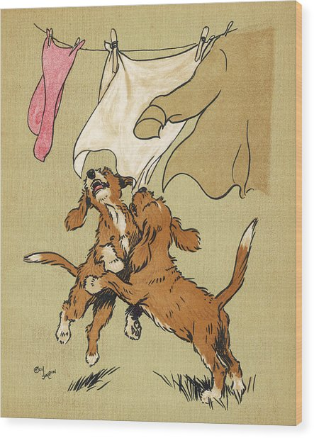 Twin Puppies, Snip And Snap Wood Print by Mary Evans Picture Library
