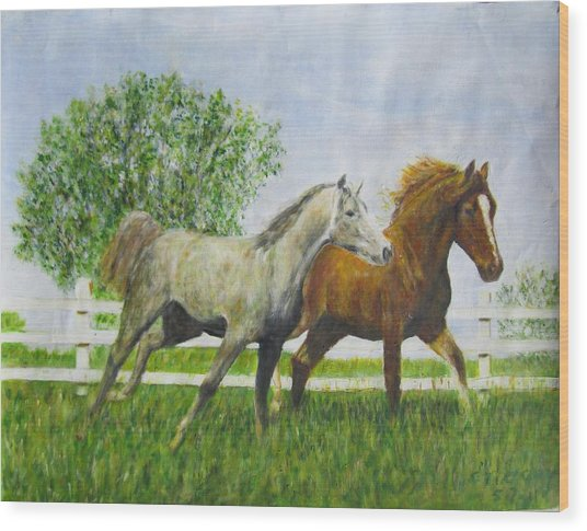 Two Horses Running By White Picket Fence Wood Print