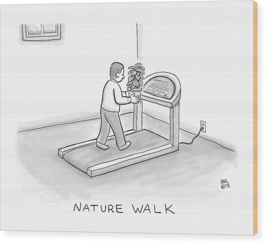 New Yorker November 7th, 2016 Wood Print