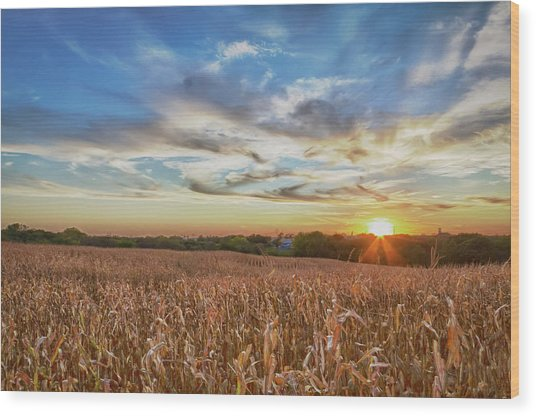Usa, Nebraska, Near Omaha Wood Print by Christopher Reed