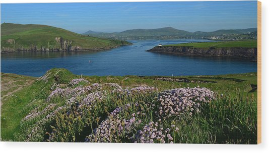 View Over Dingle Bay Wood Print