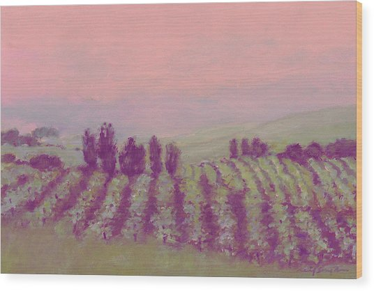 Vineyard At Dusk Wood Print