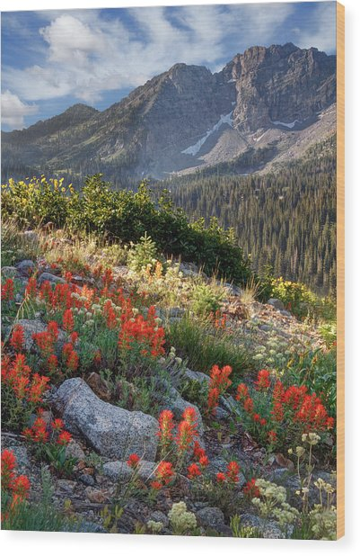 Wasatch Mountains Of Utah Wood Print