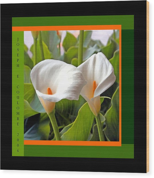2 White Lily Flowers Wood Print