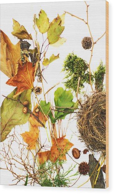 Woodsy Arrangement Wood Print