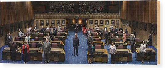 2013 Arizona Senate Portrait Wood Print