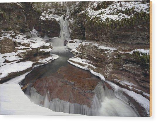 2014 Begins At Adams Falls Wood Print