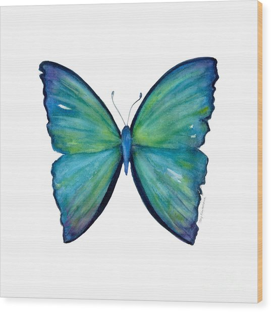 21 Blue Aega Butterfly Wood Print