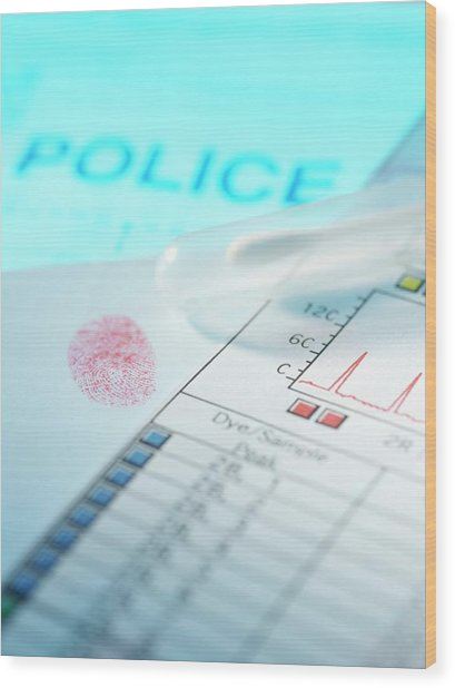 Forensic Evidence Wood Print by Tek Image