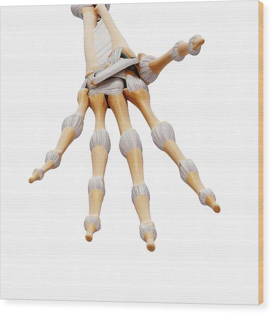 Human Hand Bones Wood Print by Pixologicstudio/science Photo Library