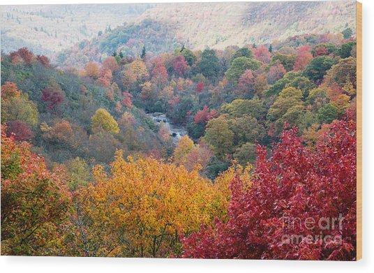 2503 Upper Falls At Graveyard Fields Wood Print by Stephen Parker